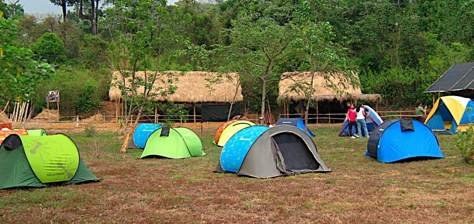 edited-forest-with-tents-pic