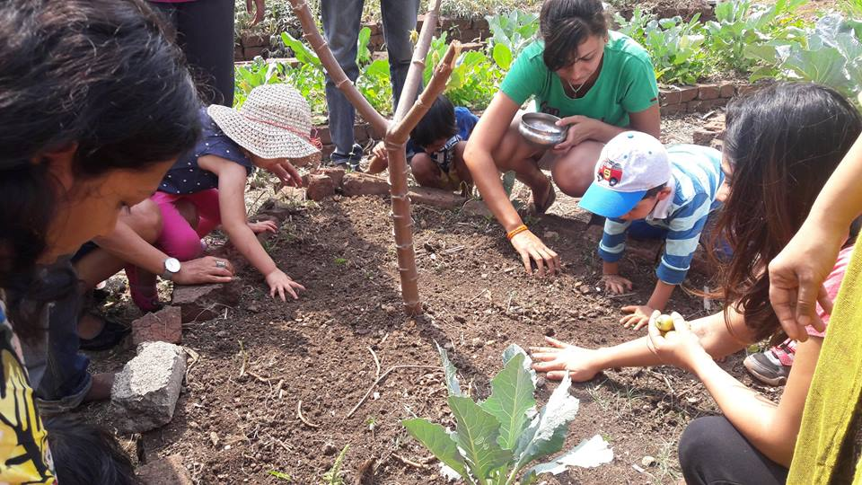 sowing seeds with children