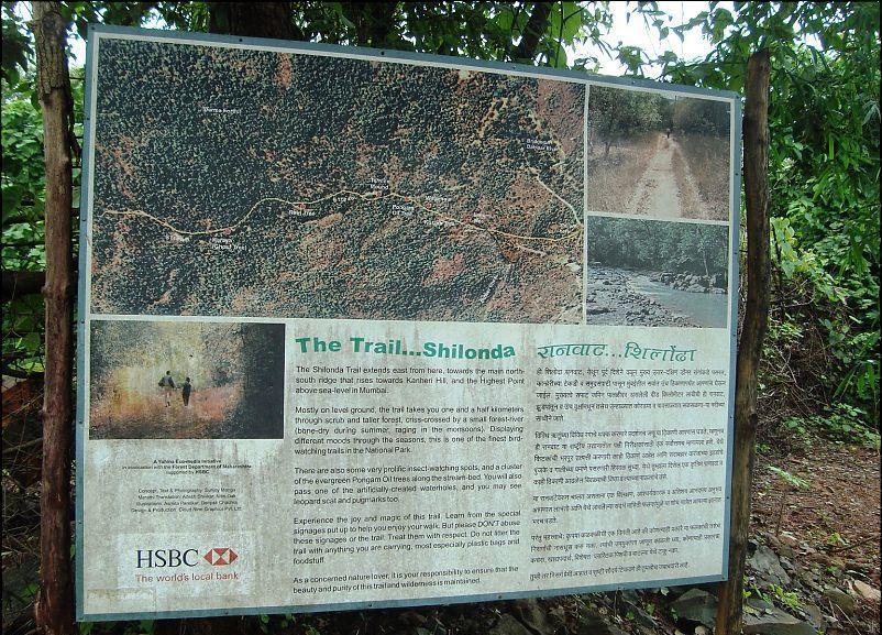 Shilonda trail board